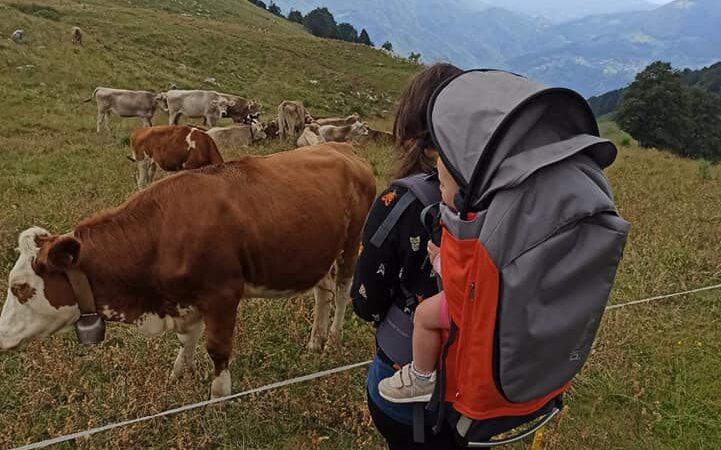 Rifugio Gherardi : Val Taleggio