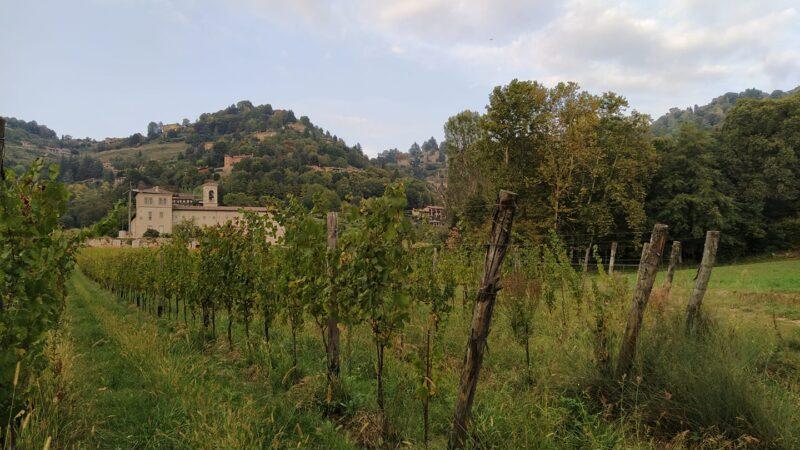 Da Monastero di Astino a S. Vigilio (passando da città alta)